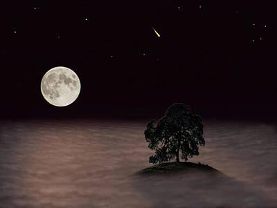 Jimerson Photograph - Lone Oak by Wes Jimerson