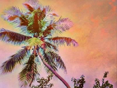 Digital Art - Lone Palm Against Orange Sky - Horizontal by Lyn Voytershark