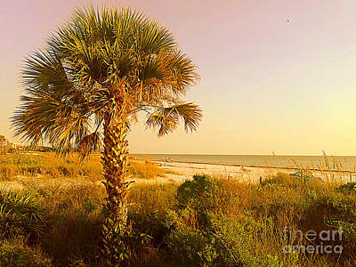 Photograph - Lone Palm Siesta Key by Lou Ann Bagnall