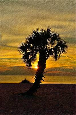 Photograph - Lone Palm Sunset by Richard Zentner