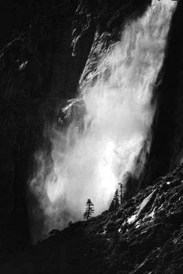 Photograph - Lone Pine And Waterfall by Richard Delbridge