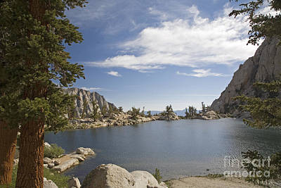 Photograph - Lone Pine Lake by Jim West