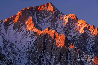 Photograph - Lone Pine Peak - February by Inge Johnsson