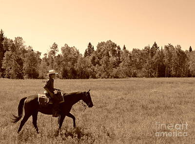 Photograph - Lone Ranger by Sarah Mullin