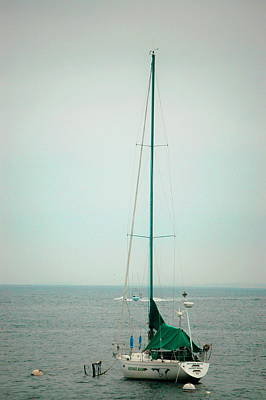 Photograph - Lone Sail by Tamyra Crossley