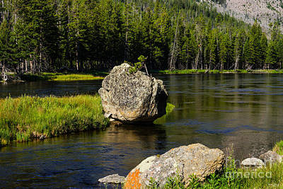 Photograph - Lone Stone In Yellowstone by Jennifer White