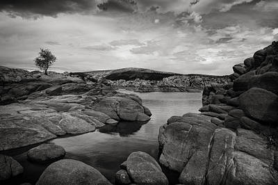 Watson Lake Photograph - Lone Tree And Watson Lake by Jesse Castellano