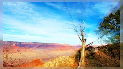 Lone Tree Canyon Art Print