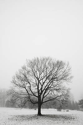 Art Print featuring the photograph Lone Tree In Snow by Ed Cilley