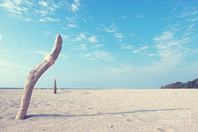 Photograph - Lone Tree On Beach by Yew Kwang