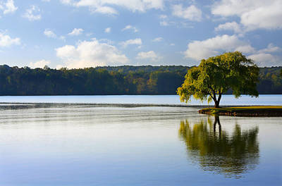 Photograph - Lone Tree On The River by Melinda Fawver