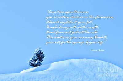 Photograph - Lone Tree Upon The Snow With Poem by Nina Silver