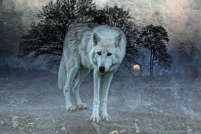 Lone Wolf Art Print by Joachim G Pinkawa