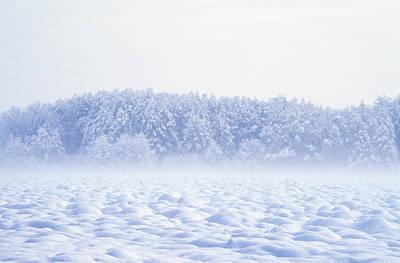 Loneliness In Winter Art Print by Patrick Kessler