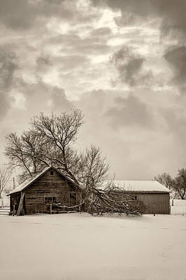 Winter Storm Photograph - Loneliness Sepia by Steve Harrington