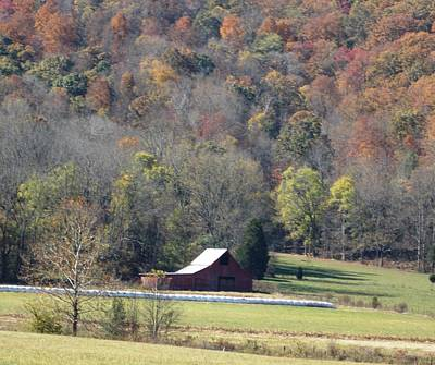 Photograph - Lonely Barn In The Cove by Regina McLeroy