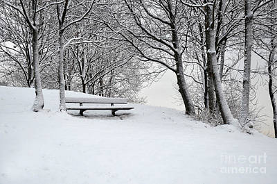 Photograph - Lonely Bench by Randi Grace Nilsberg