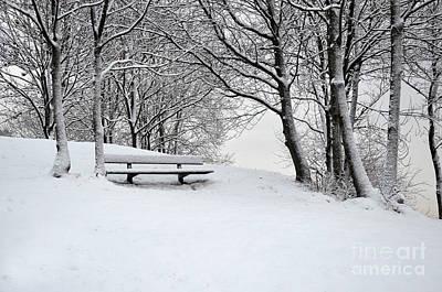 Photograph - Lonely Bench by Randi Grace Nilsberg