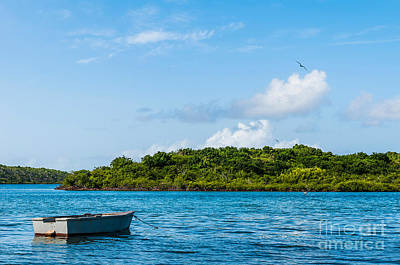 Photograph - Lonely Boat by Luis Alvarenga