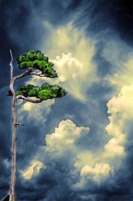 Lonely Bonsai Art Print