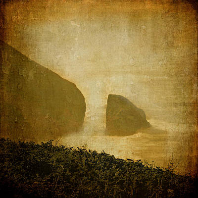 Photograph - Lonely Coast by Katie Wing Vigil