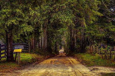 Photograph - Lonely Country Road by Lewis Mann