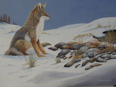 Painting - Lonely Coyote. by James Lawler