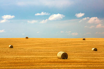 Bale Photograph - Lonely Fields by Todd Klassy