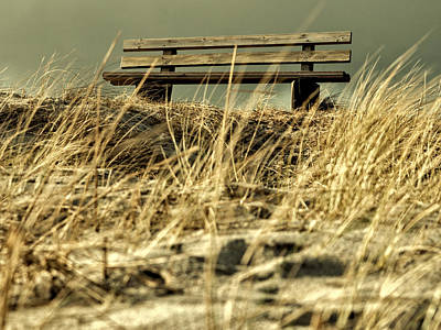 Lonely Bench Art Print by Mike Santis