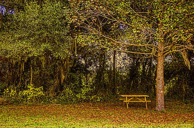 Photograph - Lonely Picnic by Lewis Mann
