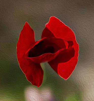 Photograph - Lonely Poppy by Radoslav Nedelchev