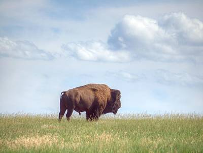 Photograph - Lonely Prairie by HW Kateley