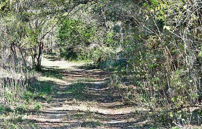 Lonely Road Original