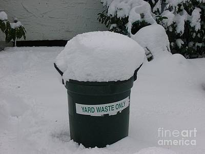 Lonely Snow Covered Trash Art Print by Anthony Morretta