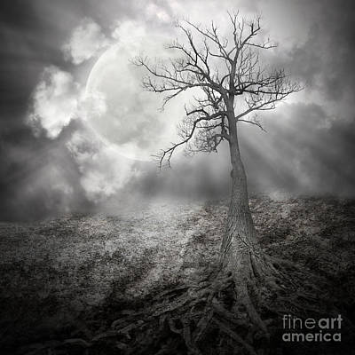 Lonely Tree With Roots Holding The Moon Art Print by Angela Waye
