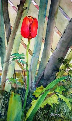 Lonely Tulip Art Print by Betty M M   Wong