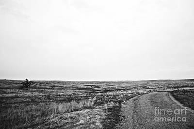 Photograph - Lonesome Highway No.1 by Lennie Green