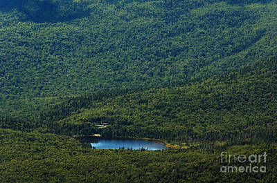 Photograph - Lonesome Lake by Sharon Seaward