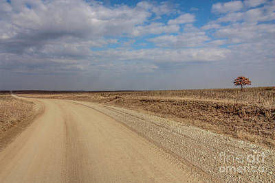 Photograph - Lonesome Road by David Cutts