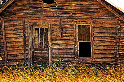 Long Abandonded 2 Art Print by Marty Koch