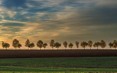 Photograph - Long Avenue Of Autumn Trees by Jason Harris