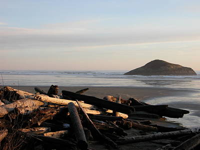 Photograph - Long Beach Drift  B.c. by Don F  Bradford
