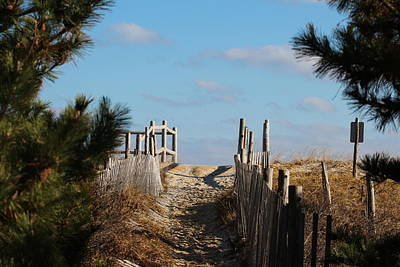 Photograph - Long Beach Island Walkway by Nance Larson