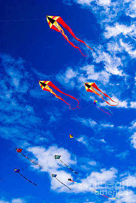 Photograph - Long Beach Kite Festival by Susan Parish