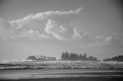 Photograph - Long Beach Landscape  by Roxy Hurtubise