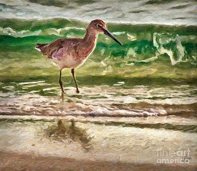Painting - Long Beaked Beach Bird by Walt Foegelle