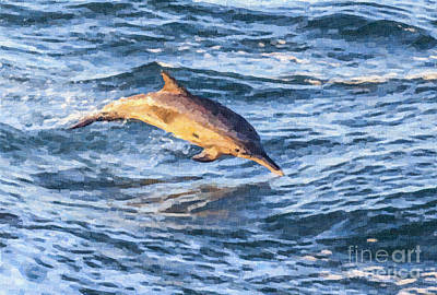 Digital Art - Long-beaked Common Dolphin Delphinus Capensis by Liz Leyden