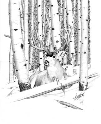 Long Buck Art Print
