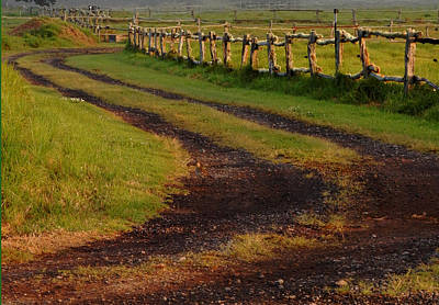 Photograph - Long Dirt Road by Pamela Walton