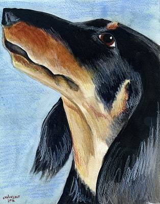 Hot Dogs Mixed Media - Long Haired Daschund by Christine Winship